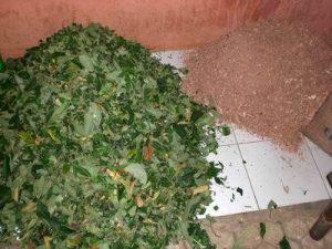 pembuatan pupuk kompos dari sampah bekas